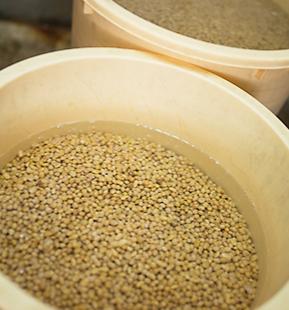 使用する大豆